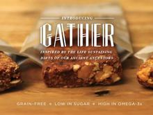 Healthy - Paleo Gather Bars